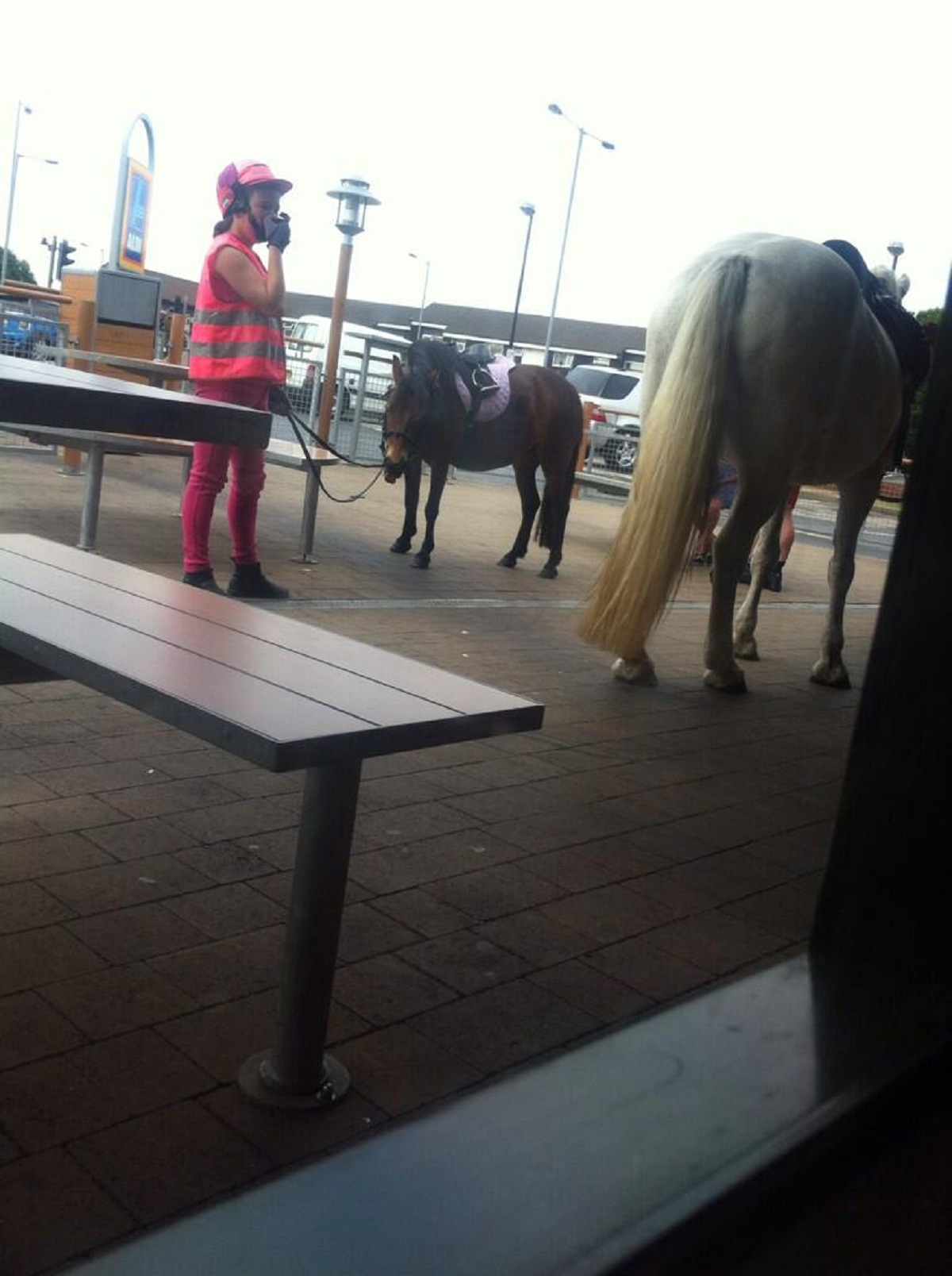 Woman fined for taking horse into McDonald's