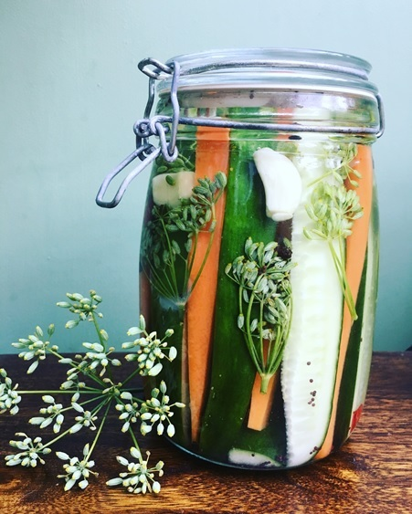 PLANNING AHEAD: Vix's homegrown and freshly pickled cucumbers will be ready in a few weeks