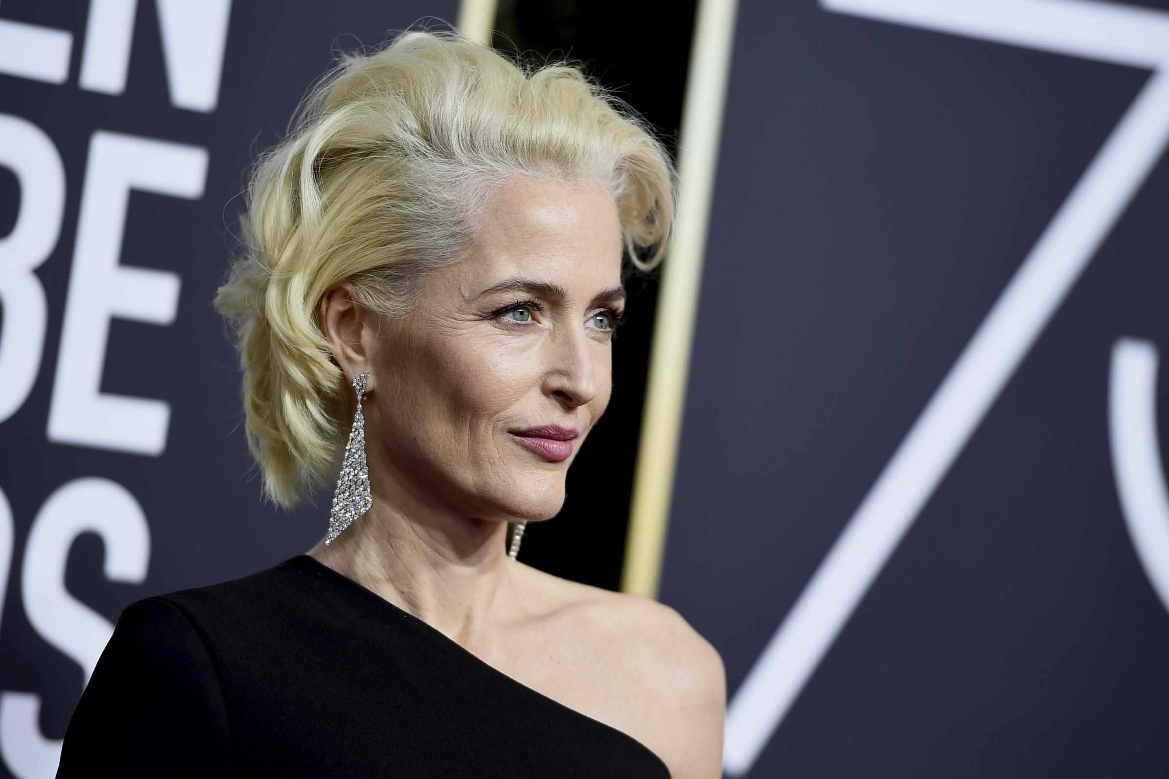 Hacked Gillian Anderson nudes (13 photos), Ass, Leaked, Instagram, swimsuit 2019
