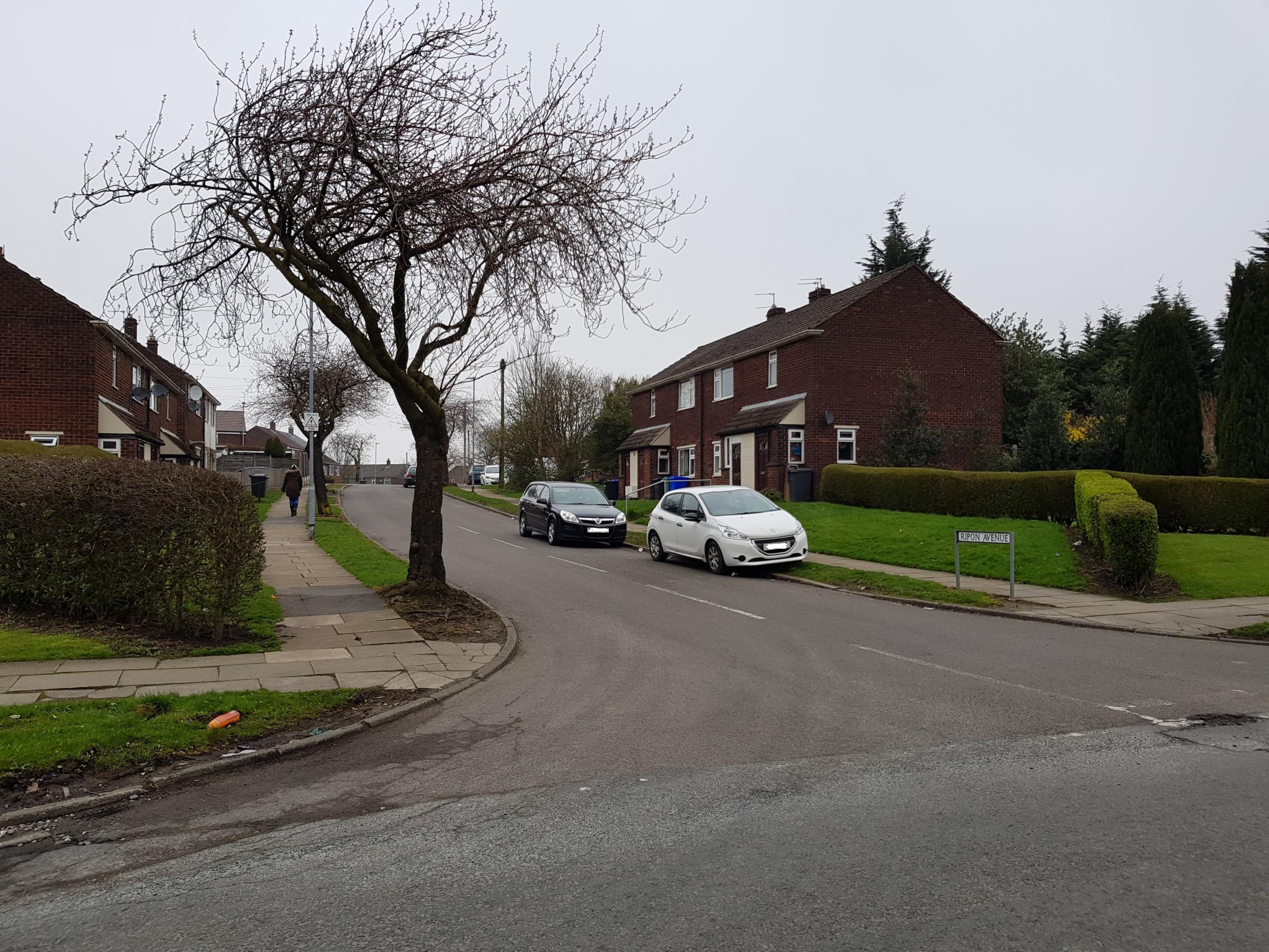 Ripon Avenue in Whitefield