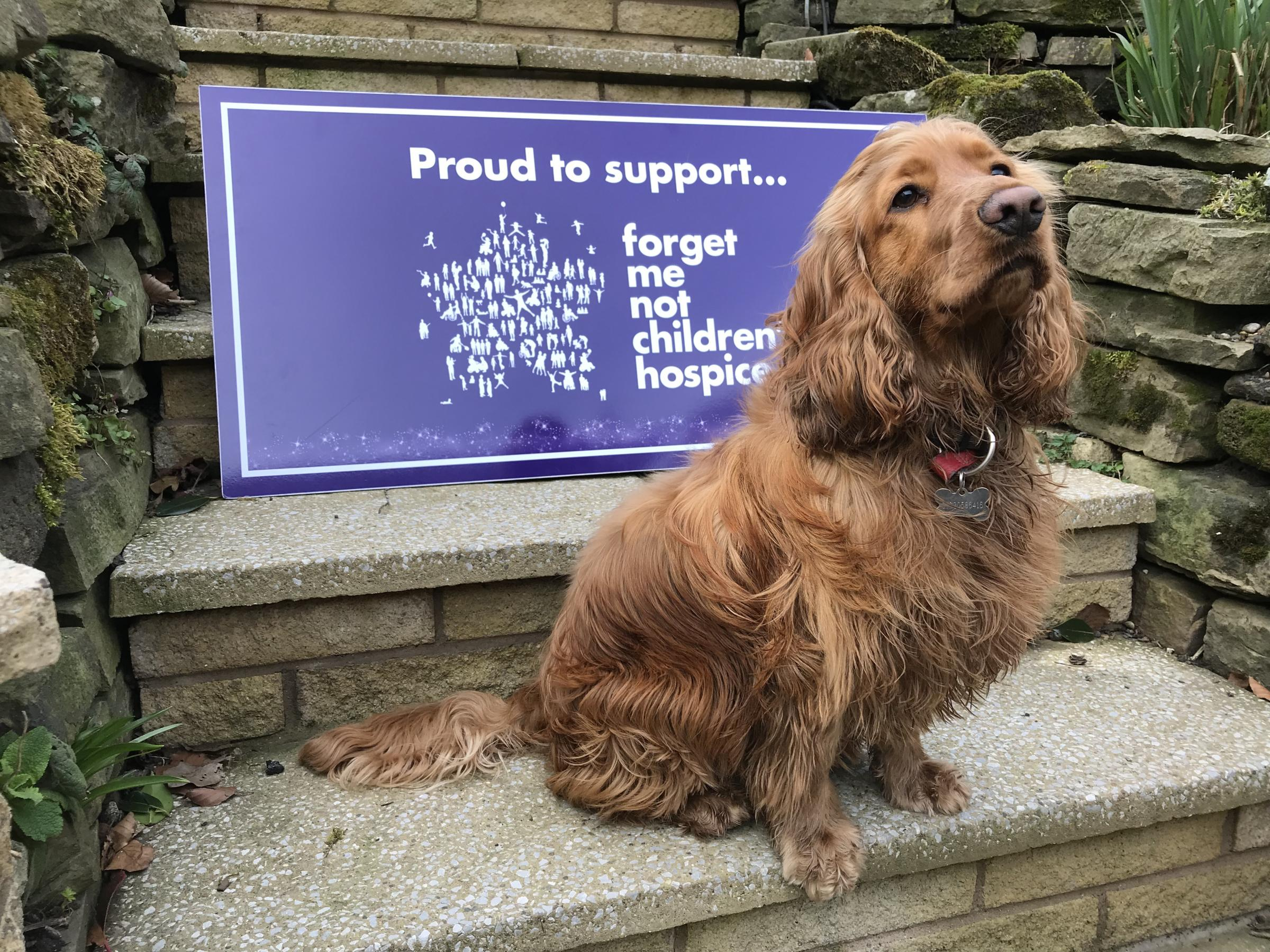 INVITATION: Forget Me Not Children's Hospice is hosting a Bark in the Park event to raise funds